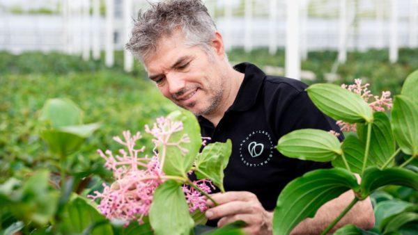 Ron de Bakker – Laguna Plants – Wateringen