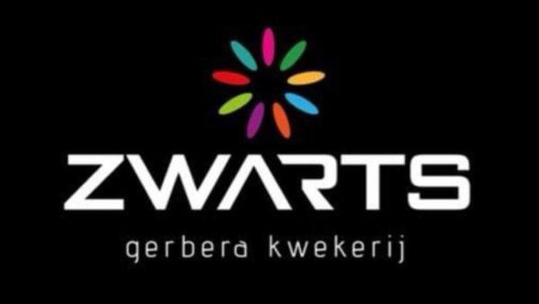 Simon Zwarts – Zwarts Gerbera's – Mijdrecht