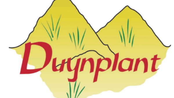 Alex Vellekoop – Duynplant – De Lier